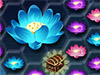 Jugar a Ark of Treasure
