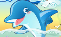 Play Dolphin Pop Games